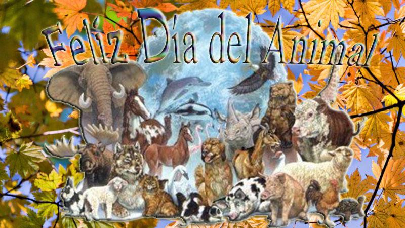 tarjetafeliz-dia-del-animal-2014-ani5