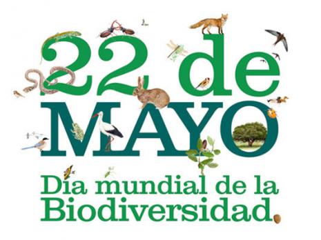 dia_biodiversidad (1)