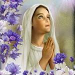 En Colombia el 8 de septiembre es el día de Natividad de Santa Maria