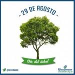 El 29 de agosto se celebra en Argentino el día del arbol