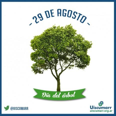 El 29 de agosto se celebra en argentino el d a del arbol for Dia del arbol 01 de septiembre