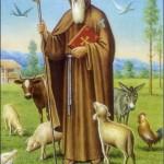 17 de enero: Día de San Antonio Abad