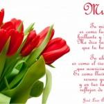 8 de marzo: Feliz Día de la Mujer