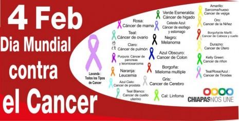 cancer-2013-tipo-de-cancer