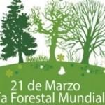 El 21 de marzo: Día Forestal Mundial