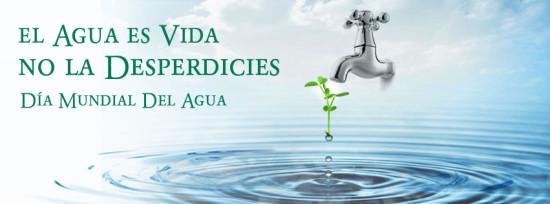 aguabanesco-blog_dia-del-agua-2014