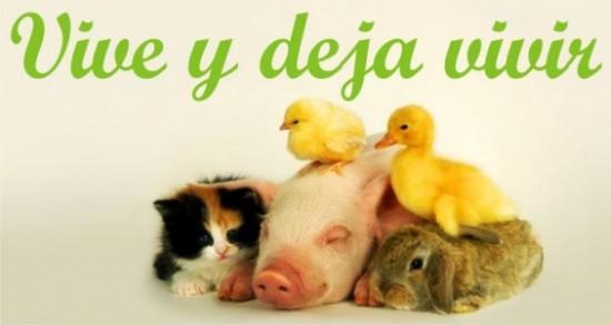 veganismofotos_gal_inicio.php