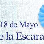 Día de la Escarapela: 18 de mayo