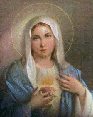Maria 5