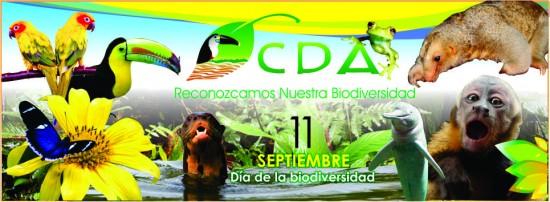 biodiversidad-sandra_thumb