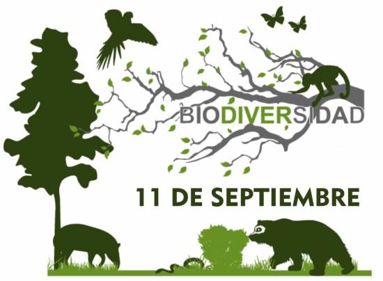 dia-internacional-de-la-biodiversidad_thumb