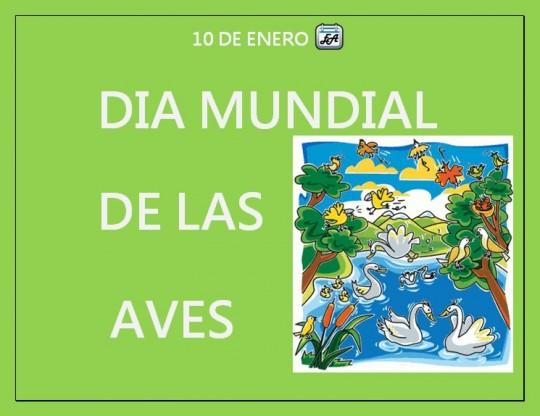 540x_dia_mundial_de_las_aves