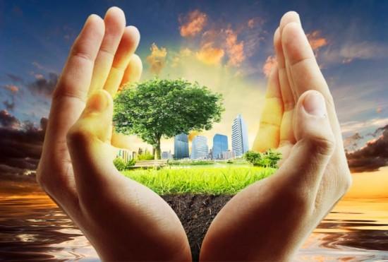 Por-el-Día-de-la-Tierra-y-el-Día-del-Árbol-Cultiva-un-jardín-con-tus-hijos-MainPhoto