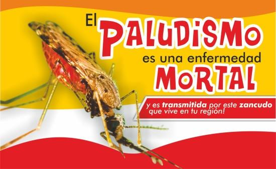 Paludismo_jpg