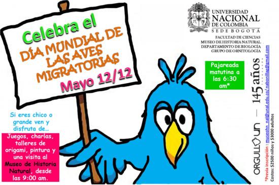 dia-internacional-de-las-aves-Día-Mundial-Aves-Migratorias1