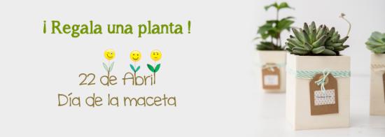 dia_de_la_maceta