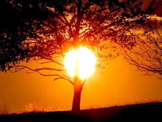 día-del-sol-1024x768