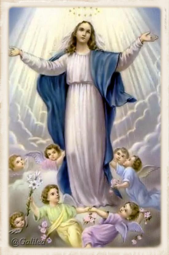 Asuncion de María a los cielos 15 agosto