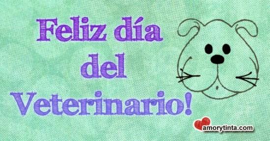 dial-del-veterinario3