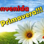 Bienvenida Primavera: imágenes muy coloridas para descargar y compartir en Facebook