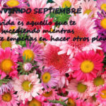 Bienvenido septiembre: Imágenes muy primaverales para compartir
