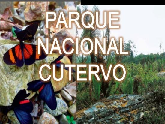parque-nacional-cutervo-1-638