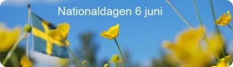 dia_nacional_Suecia_thumb[2]