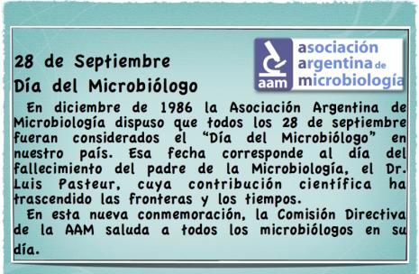 SaludoMicroparaweb
