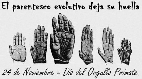 El parentesco evolutivo deja su huella(texto)