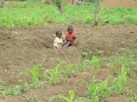 dia del niño en angola 1 de junio