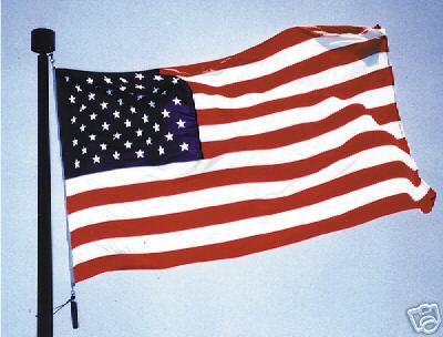 Bandera-EEUU 14 de junio