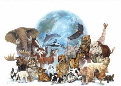 dia de los animales en venezuela 4 de otubre