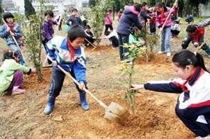 dia-del-arbol china 12 de marzo