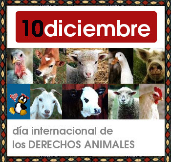 cartel_animales2