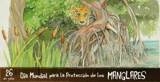 manglares_2013