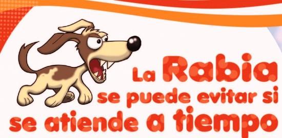 rabia1