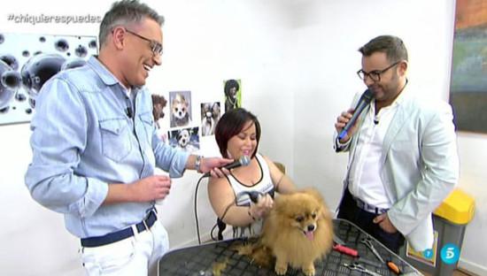 Chiqui-reaparece-ahora-peluquera-canina_MDSVID20150304_0158_17