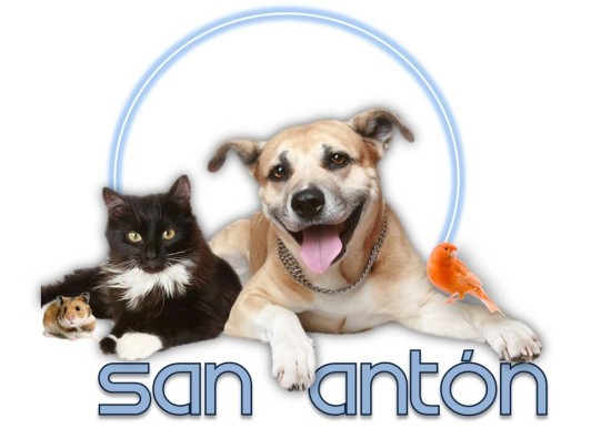 san-anton-patron-mascotas