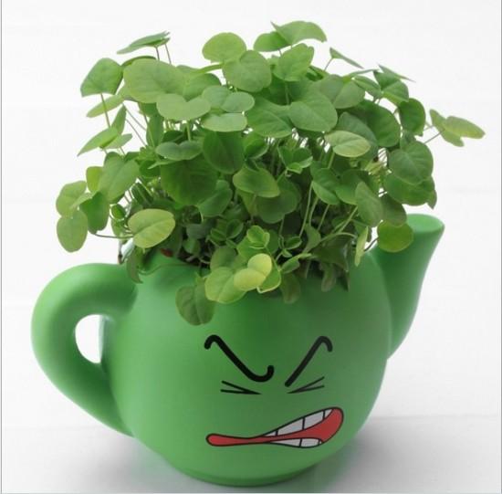 Free-shipping-Mini-teapot-flower-pot-ceramic-planter-pot-seeds-four-colors-home-garden-supplies