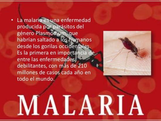 malaria-3-728