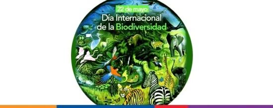dia-biodiversidad