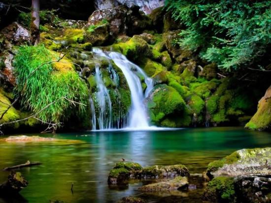 naturaleza-biodiversidad