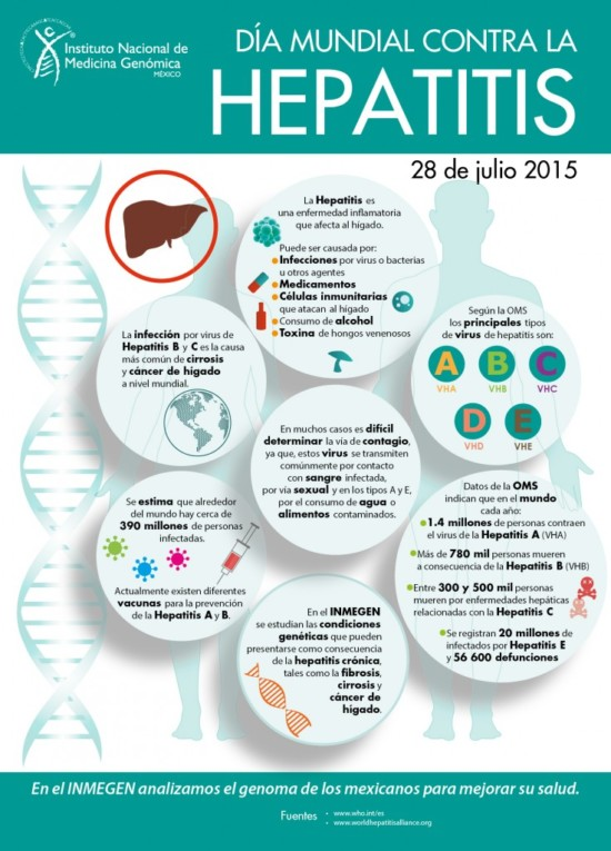 Hepatitis2015-736x1024