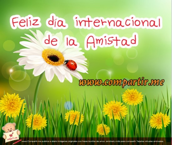International-Friendship-Day-spanish
