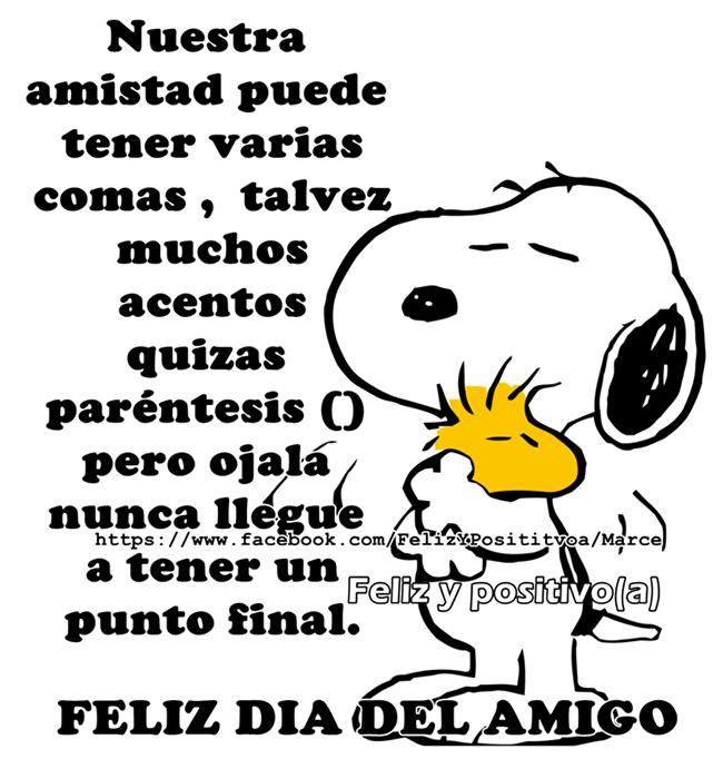 dia-del-amigo_047
