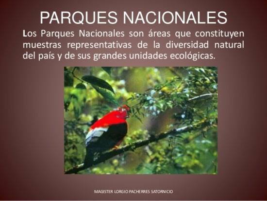 parques-nacionales-2-638
