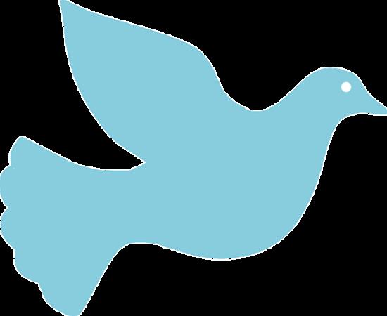 dove-157701_640