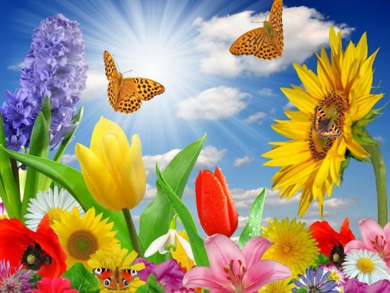 equinoccio-de-primavera